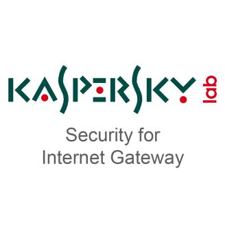 Security for Internet Gateway